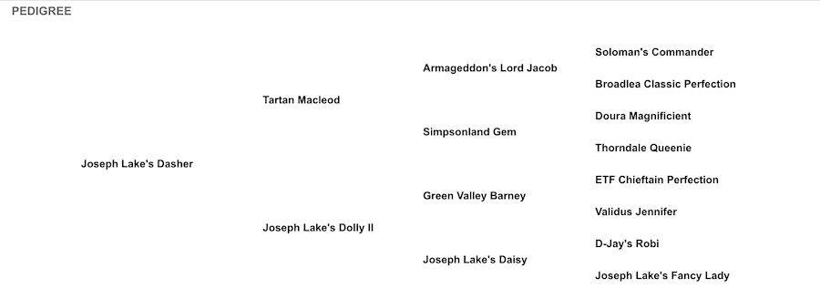 Joseph Lake's Dasher Pedigree